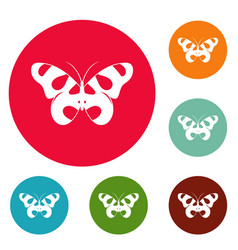 Flying butterfly icons circle set vector