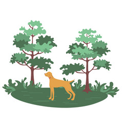 Green forest with trees and bushes and hunting dog vector