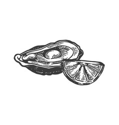 Oyster with lemon sea animal engraving vector
