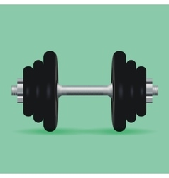 Realistic dumbbell for fitness classes vector