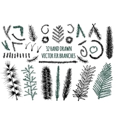 Set of 32 Hand Drawn Fir Branches vector image