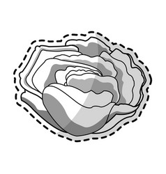 single flower icon image vector image