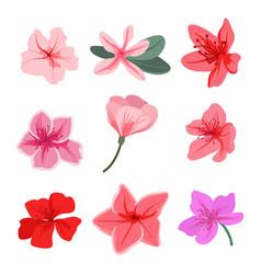 Variety cute flowers set vector