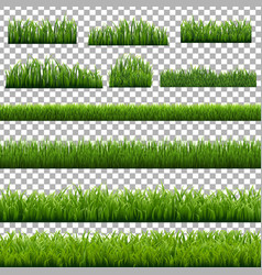 Big set green grass borders transparent vector