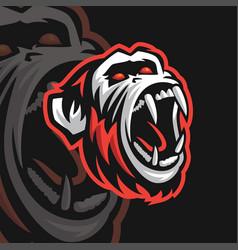 chimp e sport logo vector image