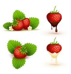 close up red ripe strawberry with leaves vector image