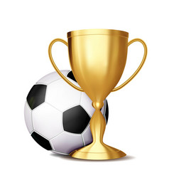soccer award football ball golden cup vector image