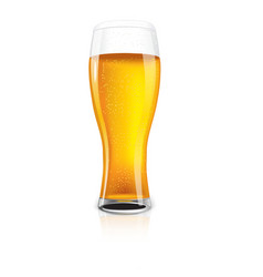 Excellent Isolated glass of beer with drops vector image