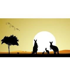 kangaroo family silhouette vector image