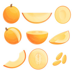 Melon icons set cartoon style vector