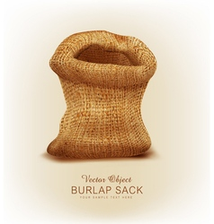 Object- a burlap sack vector