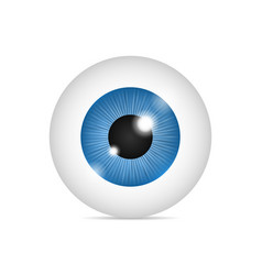 Realistic human eyeball vector