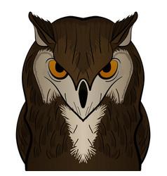 cartoon clip art owl mascot vector image