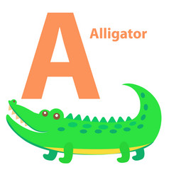alphabet for children a letter alligator cartoon vector image