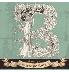 Magic grunge forest hand drawn by vintage font - B vector image
