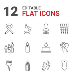 12 one icons vector image