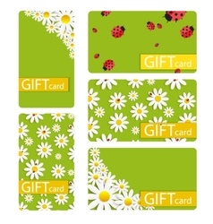 Abstract Beautiful Gift Card Design Set vector image