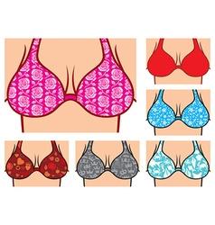 Breasts in bikini vector image