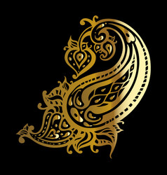 paisley ethnic ornament vector image