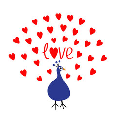 Peacock open red heart set tail word love text vector