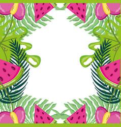 Tropical summer frame vector
