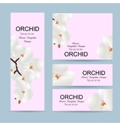 Flowers invitation template with flowers orchids vector image vector image