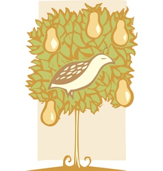Partridge and Pear Tree vector image vector image