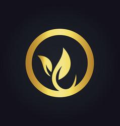 round leaf organic gold logo vector image vector image