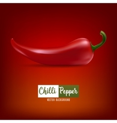 Background with red chilli pepper vector