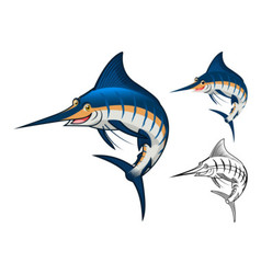 Blue Marlin Fish vector image