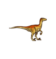 Dinosaur tyrannosaurus or t-rex isolated animal vector