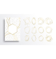 Gold and white luxury card background collection vector