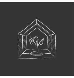 Greenhouse Drawn in chalk icon vector