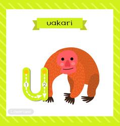 Letter u lowercase tracing uakari vector