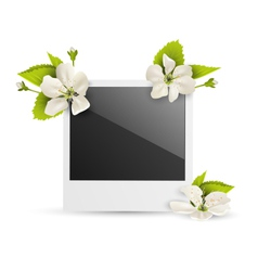 Photo frame with white cherry flowers isolated on vector