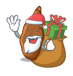 Santa with gift fresh cassava isolated on the vector