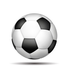 soccer ball isolated on white vector image