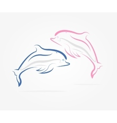 Two dolphins jumping vector