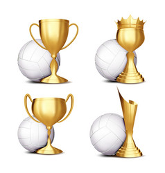 Volleyball game award set volleyball ball vector