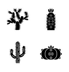 wild cacti glyph icons set vector image