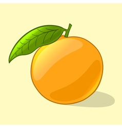 Orange in cartoon style vector image