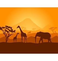 safari vector image vector image