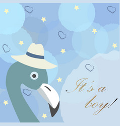 baby boy birth announcement cute bird announces vector image
