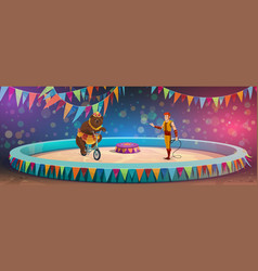 chapiteau circus bear and handler stage or arena vector image