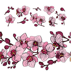 elements set of orchid vector image