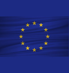 european union flag flag of european union vector image
