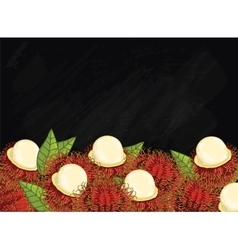 Rambutan fruit composition on chalkboard vector