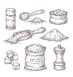 Salt sketch hand draw spice vintage bowl spoon vector