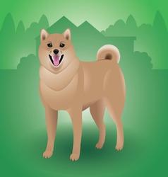 Shiba-Inu-Dog vector