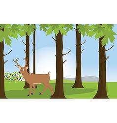 Forest landscape with deer vector image
